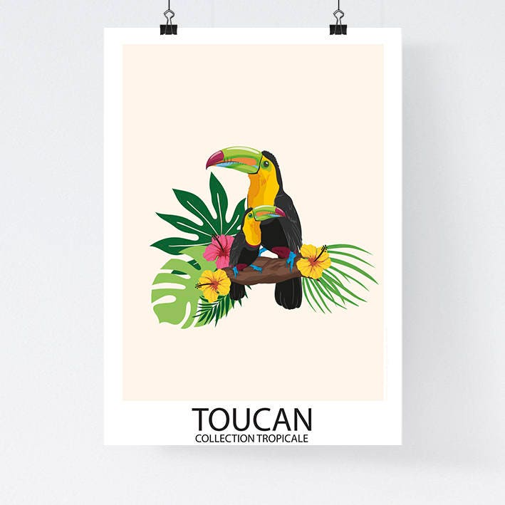 a3 affiche papier collection tropicale oiseau toucan. Black Bedroom Furniture Sets. Home Design Ideas