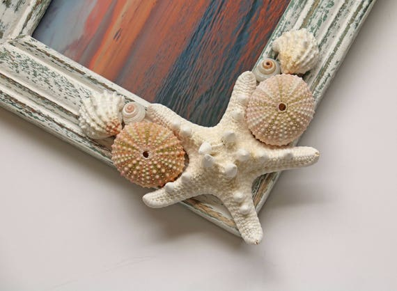 Seashell photo frame shell picture frame beach decor for Anchor decoration css