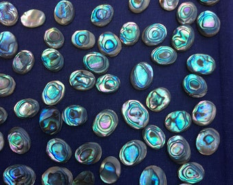 Single Piece ~ Abalone Eye Large Collector Grade -  Paua shell Rare 9mm, 10mm, 11mm, 12mm, 13mm, 14mm, 15mm all are approx 2 - 3.5mm high