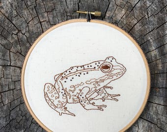 Frog embroidery