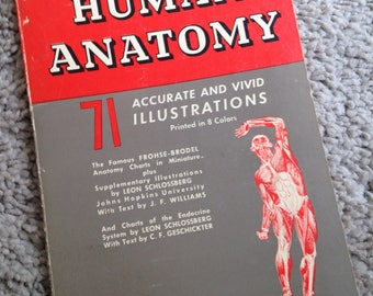 Atlas of Human Anatomy Barnes and Noble Inc. Paperback Book 1953