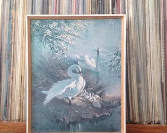 Vintage Swan Framed Picture - Vernon Ward