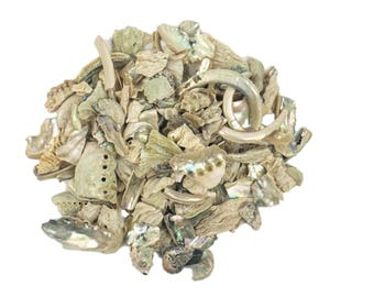 Natural African Abalone Pieces: Assorted Sizes. 1 KG  (2.2 pounds) bag (220-TP-NA)