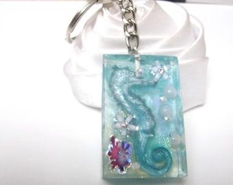 key seahorse Sea World