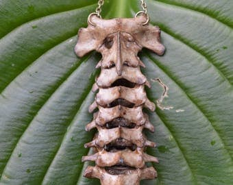 Articulated Spine Necklace