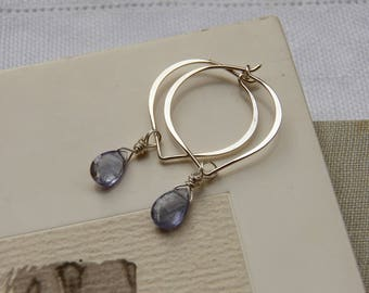 Lovely Tanzanite Sterling Silver Hoop Earrings