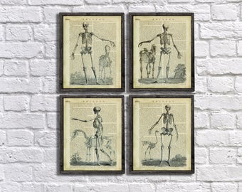 Halloween Decorations set of 4 Art Prints, Skeleton Bookart, Halloween Decoration Ideas, Goth Halloween Decor, Vintage Skeleton Wall Art