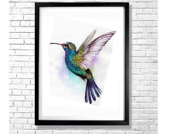 HUMMINGBIRD - Colorful Bird Watercolor Art Print Poster Animal Illustration Purple Green Yellow White Wall Decor