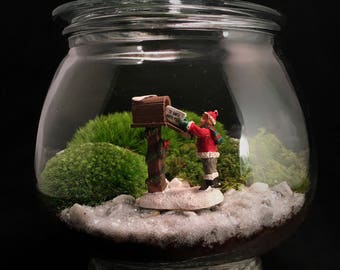 Image result for christmas terrarium