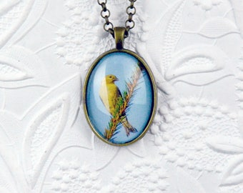Finch Photo Necklace Wildlife Photo Necklace Finch Lovers Bird Necklace Bird Jewelry Finch Jewelry Finch Photo