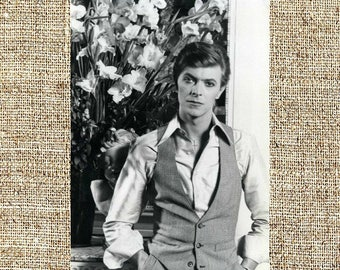 David Bowie photograph, black and white photo print, vintage photograph, rock music decor, gift for him, Thin White Duke
