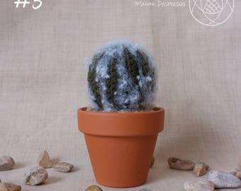Crochet Cactus | #3