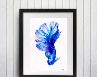 Fish Art Print - Betta in Blue (smaller sizes)