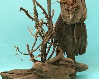 Driftwood Owl, Owl, Barn Owl, Great Horned Owl, Driftwood Home Decor, Driftwood Beach Decor, Driftwood Art, Driftwood Collectible