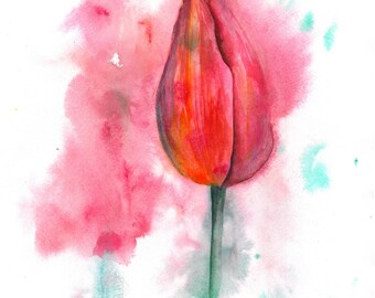 Red tulip. Original watercolor.
