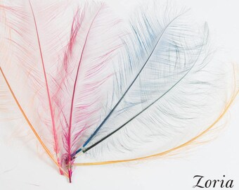 12-14 Inch Burnt Ostrich Feather Trims Per Piece   DF-BOST12