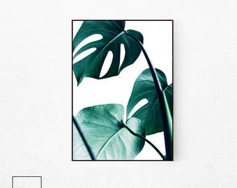 Monstera Leaf Poster, Tropical Leaf Print, Monstera Poster, Monstera Deliciosa, Plant Print, Botanical Poster, Tropical Plant Poster.