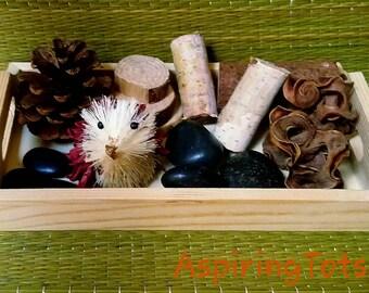 Woodland Loose Parts Tray / Montessori / Reggio Emilia / Natural Blocks / Open ended / Pretend Play / Desk Toy / Provocation / Tinker Tray