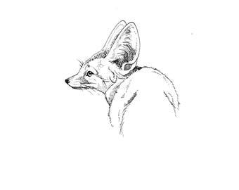"""Original Ink Drawing-""""Desert Fox"""""""