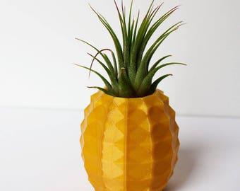 Air Plant Holder, Pineapple Pot, 8 Colors ~ Cute Desk Pot ~ With or Without Plant