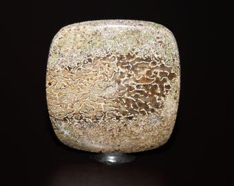 Dinosaur Bone Cabochon, Agatized Dinosaur Bone Cabochon, AAA Quality Fossil Cabochon DLML12