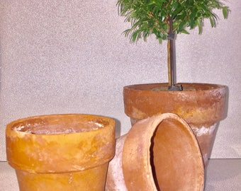 2 Extra Small Vintage Terracotta Pots