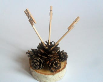 3 clip photoholder, Unique pine cone photo holder, Photo stand, Note holder, Office table decor, Housewarming gift, Gift, Home decoration