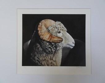 Ram Limited Edition Original Giclee Print
