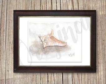 Watercolor Conch Shell