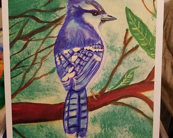 Bluejay of Spring