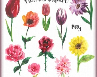 Watercolor flowers clipart, Flowers clip art, Hand painted flowers, Flowers drawing, Flowers png, Instant download