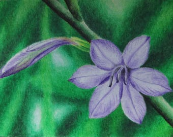 purple blossom original painting
