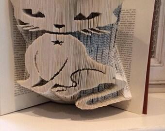 CAT FOLDED BOOK