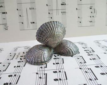 Little Vintage Seashell Card Holder
