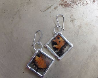 Butterfly Earrings Painted Lady Wings