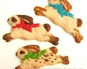 Ostern Hase Cookies Bunny Cookies Cookies Ostern Geschenk Ostern Gefälligkeiten Ostern Korb Geschenk Cookie Gefälligkeiten Osterhase unter 30