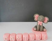 Elephant Name Blocks Cake toppers Celebration Party Sugar Craft Fondant sugarpaste edible Birthday Cake Party Decoration