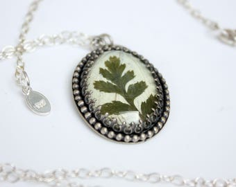 Real Pressed Fern and Butterfly Wing Sterling Silver Pendant Necklace Real Plant Pressed Flower Jewelry Gifts for Her Ritual Remains Unique