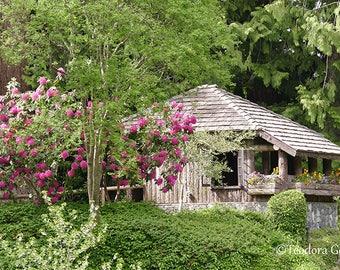 Garden Cabin Photography, Botanical, Garden Photography, Travel Photography, Rustic Cabin Photography