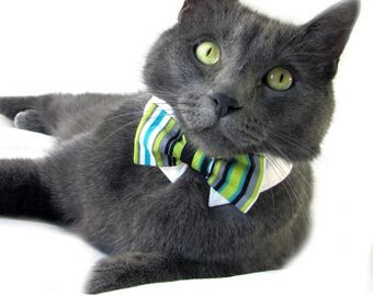 Green and Teal Striped Bow Tie, Necktie, or Bow on a Shirt Style Collar for both Dogs & Cats