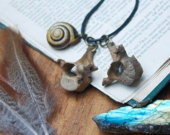 tribal style fox vertebrae bones and snail shell dangle necklace hippy festival beach wear holiday dangle pendant