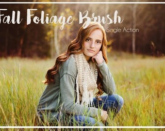 Fall Foliage Action  Photoshop