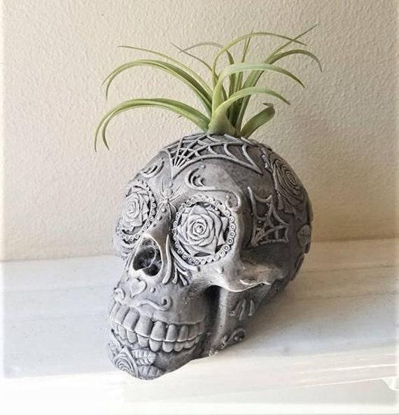 Sugar skull planter, air plant holder, Day of the Dead skull,  Dia De Los Muertos, skull book end