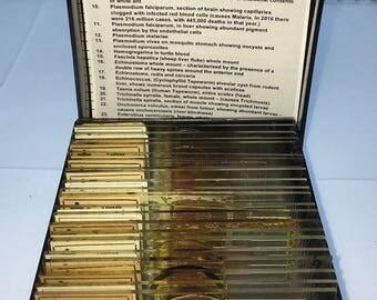 PARASITE SLIDES TURTOX set deadly human disease microscope vintage prepared