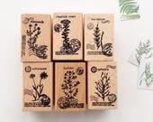 Botanical Rubber Stamp // Wooden Rubber Stamp
