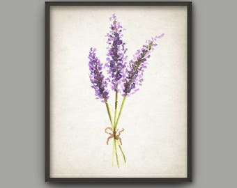Lavender Watercolor Wall Art Print, Lavender Painting, Purple Flower Picture,Lilac Purple Botanical Illustration, Lavender Plant Poster B752