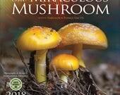 Miraculous Mushroom 2018 Wall Calendar