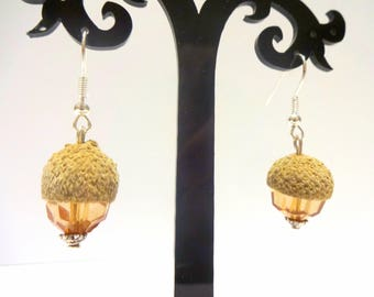Real Acorn earrings fruit of the oak