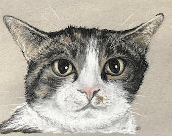 Custom Charcoal Pet Portraits