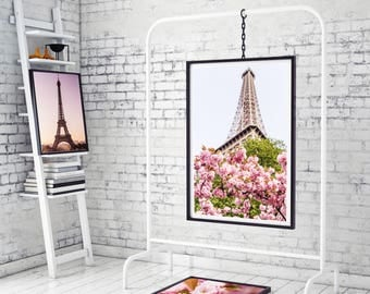 Photography + Photo Frame - Cherry blossoms under the Eiffel Tower - Paris - France